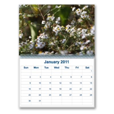 Calendars - Customizable, Wall